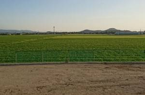 basso田園風景